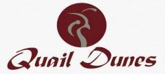 QD Logo 1